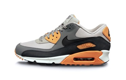 Nike Air Max 90 Essential Pale Grey, Black and Antrachite